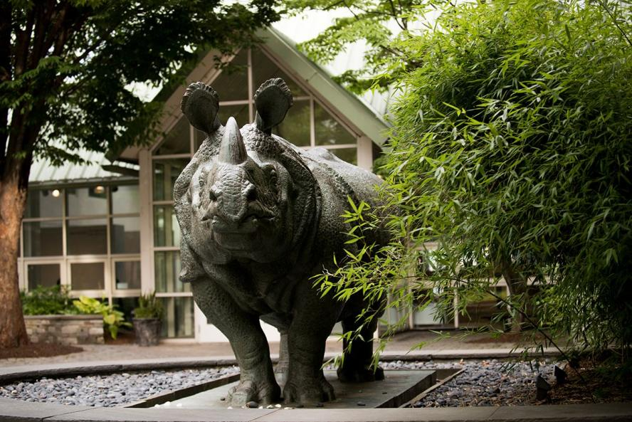 Statue of Bessie the Rhino